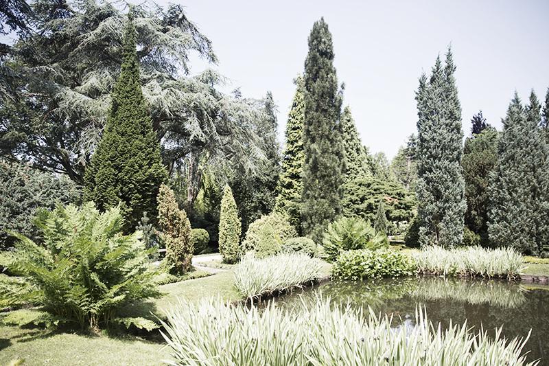 Trompenburg tuinen en arboretum rotterdam marion leeflang for De tuinen rotterdam